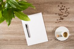 Espresso on table with green plant, coffee beans and white blank stock photos
