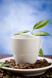 Espresso With Green Leaves Royalty Free Stock Photo