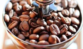 Espressobönor i en molar Slut som skjutas upp Makro Arkivbild