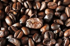 Espressobönor Slut som skjutas upp Makro Fotografering för Bildbyråer