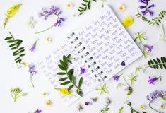 Esprima l'amore scritto su un taccuino con i wildflowers Immagine Stock