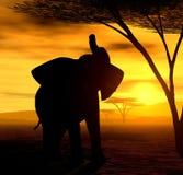 Esprit africain - l'éléphant Photo libre de droits