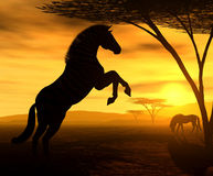 Esprit africain - le zèbre Photographie stock libre de droits