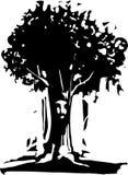 Esprit d'arbre de visage Image libre de droits