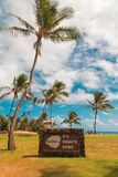 Esprit stupéfiant de Kauai à la plage photo libre de droits