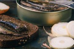 Esprots en boîte dans la boîte en fer blanc avec du pain de seigle Sur le fond rustique Photos stock