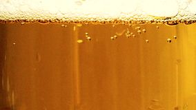 Espuma a cerveja em um fim de vidro do cálice acima vídeos de arquivo