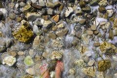 Espuma da água do mar que espirra em pedras e em mulher com os pés descalços imagens de stock