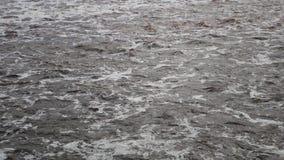 A espuma de Muddy River Brown Water With flui fluxo turbulento vídeos de arquivo