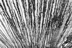 Espuma del túnel de lavado que fluye abajo en ventana brillante con la película negra de Imágenes de archivo libres de regalías