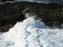 Espuma do mar Imagens de Stock