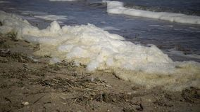 Espuma sucia en el agua y la costa, eutroficación, contaminación del depósito, problema ecológico almacen de video