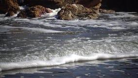 Espuma sucia en el agua y la costa, eutroficación, contaminación del depósito, problema ecológico almacen de metraje de vídeo