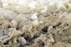 Espuma suja do mar Imagem de Stock