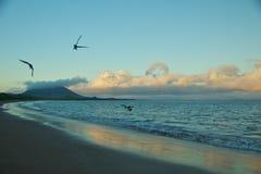 Espumilia Beach in Santiago Island Royalty Free Stock Photos