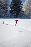 Esquí a campo través del hombre joven Foto de archivo