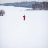 Esquí a campo través del hombre joven Foto de archivo libre de regalías
