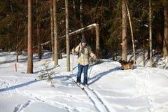 Esquí a campo través del hombre joven a través del bosque Imagen de archivo libre de regalías