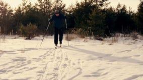 Esquí de fondo en un día soleado Un esquí del hombre en el bosque del invierno almacen de video