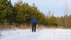 Esquí de fondo en un día soleado Un esquí del hombre en el bosque del invierno en una cámara lenta almacen de video