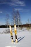 Esquí de la caza imagen de archivo libre de regalías