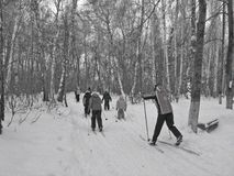 Esquí de la familia de los deportes en el parque de la ciudad imagen de archivo libre de regalías
