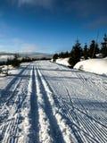 Esquí del campo a través Imagen de archivo