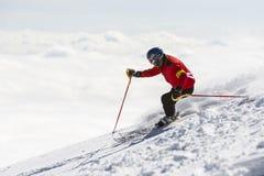 Esquí del esquiador del estilo libre Foto de archivo