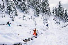 Esquí del esquiador el día soleado, un parque nacional más lluvioso del mt, Washington, los E.E.U.U. Imagen de archivo libre de regalías