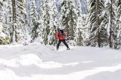 Esquí del esquiador el día soleado, un parque nacional más lluvioso del mt, Washington, los E.E.U.U. Imagen de archivo