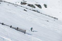 Esquí del esquiador en nieve fresca del polvo Fotografía de archivo libre de regalías