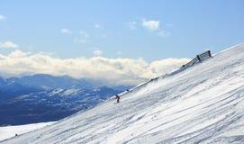 Esquí del esquiador en nieve fresca del polvo Imagen de archivo libre de regalías