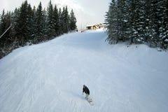 Esquí del invierno Imágenes de archivo libres de regalías