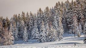 Esquí en el Jura Imagen de archivo libre de regalías