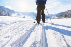 Esquí en invierno fotografía de archivo
