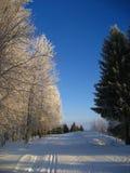 Esquí-pista Imagenes de archivo