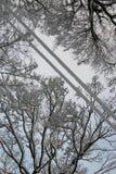 Esquí-pista del cielo Imagenes de archivo