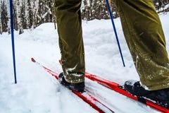 esquís Fotos de archivo