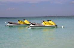 Esquís del jet en caimanes magníficos Imagenes de archivo
