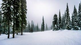 Esquí en las nubes y la niebla en el pueblo alpino de los picos de Sun Imágenes de archivo libres de regalías