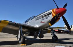 Esquadrão vermelho da cauda do mustang dos aviadores P-51 de Tuskegee da Ii-era da guerra mundial Foto de Stock Royalty Free