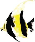 Esquatina dos peixes, aquarela desenhado à mão Fotos de Stock Royalty Free