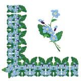 Esqueça-me canto não floral e linha elementos do quadro isolados Imagem de Stock