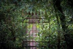Esquecido velho, portas do ferro Imagens de Stock