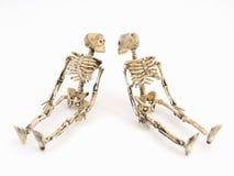 Esqueletal permanece Imagens de Stock Royalty Free
