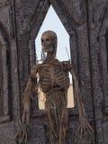 Esqueleto Imagenes de archivo