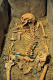 Esqueleto fotografía de archivo