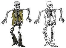 Esqueleto ilustración del vector