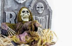 Esqueleto de Dia das Bruxas Fotografia de Stock