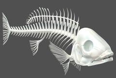 Esqueleto 03 de los pescados ilustración del vector